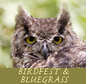 Birdfest and Bluegrass Ridgefield NWR